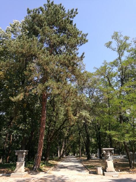 Military Academy Park