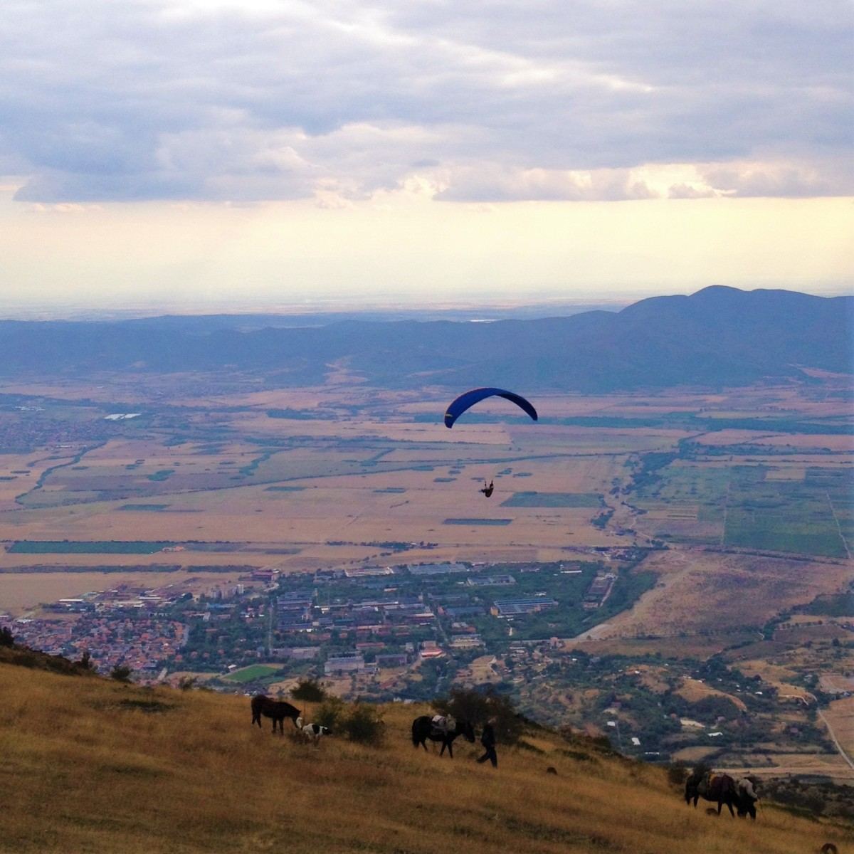 Outdoor Adventures | Paragliding above Sopot
