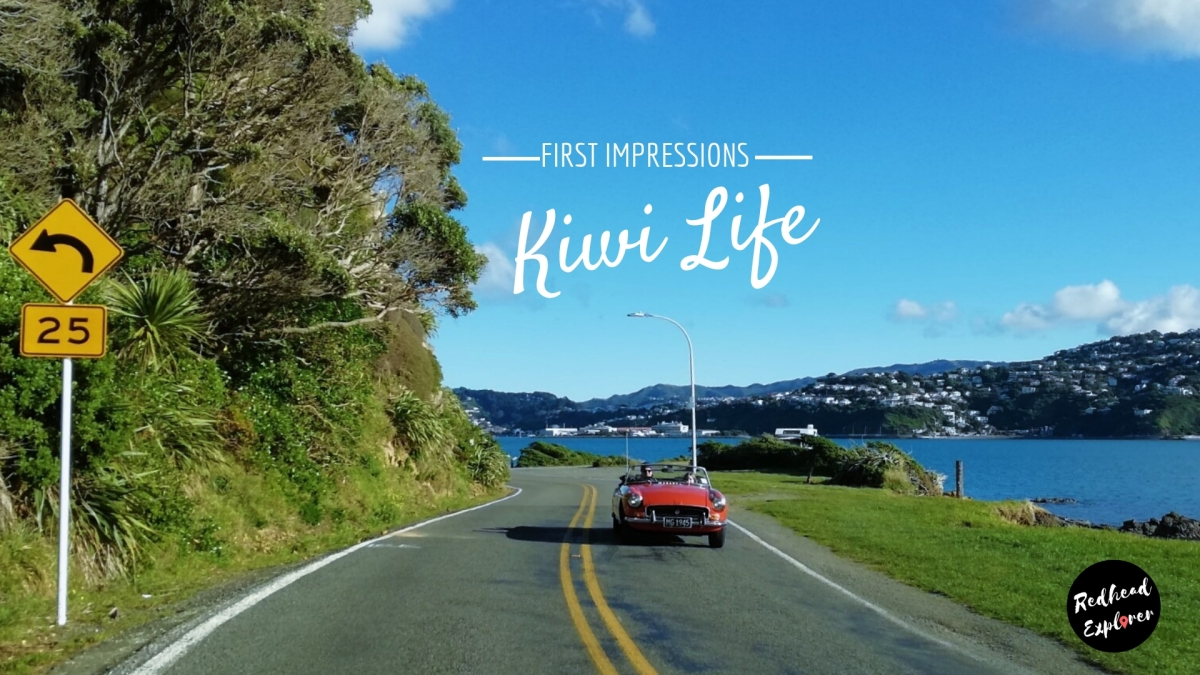 First Impressions | Amazing, weird & unexpected things about Living in New Zealand